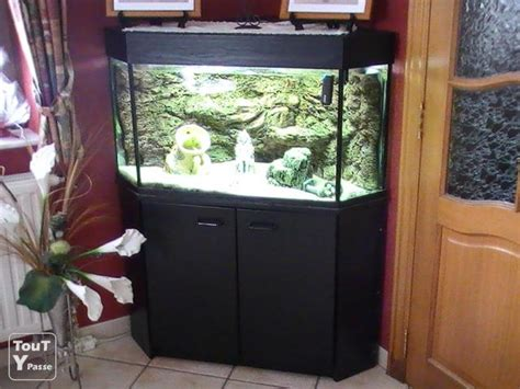 aquarium en coin a vendre vend aquarium de coin toutypasse be