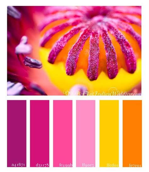 pink and yellow make what color best 25 pink yellow ideas on yellow mirrors