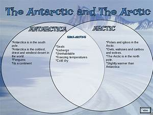 Katareina  The Arctic And Antarctic