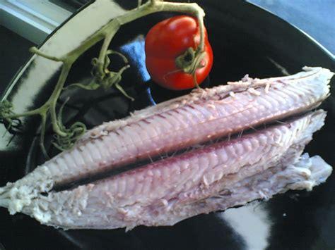 cucinare palamita la piccola casa il pesce azzurro palamita in crosta di