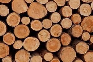 Gartentore Aus Holz Bilder : suchthaufen kann man alkohol eigentlich auch aus holz herstellen ~ Michelbontemps.com Haus und Dekorationen