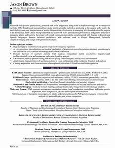 science and research resume samples resume professional With scientific resume writing services