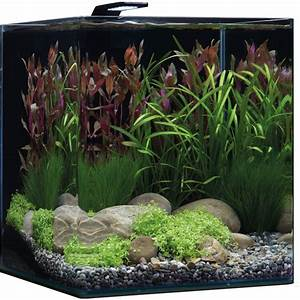Aquarium nano cube basic 60l led l dennerle for Prix d un bassin de jardin 6 aquascaping dennerle