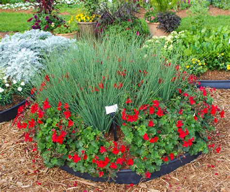 easy care garden ideas top 28 easy care garden ideas 25 best ideas about low maintenance garden on pinterest 5