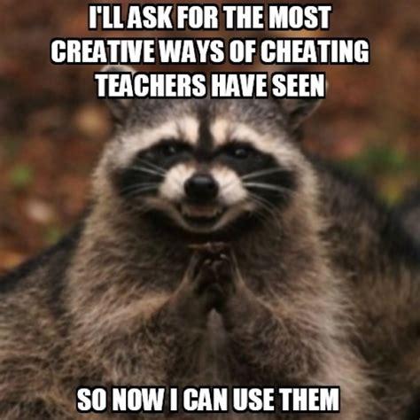 Evil Raccoon Meme - evil raccoon is at it again meme guy