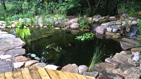 DIY Koi Pond HD1080, koi basin, bog, bio filter, UV