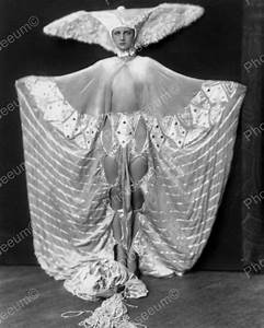 Luna Moth Showgirl Vintage 8x10 Reprint Of Old Photo