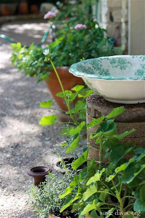 antique basin bird bath susie davis