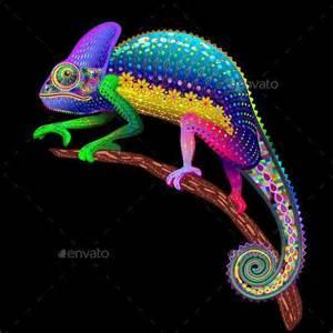 Rainbow Color Chameleon