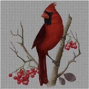 cardinal portrait crochet pattern