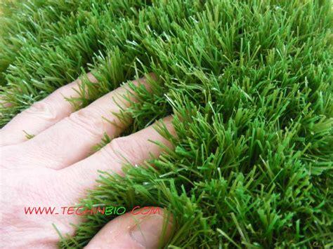 tappeto erboso sintetico prato sintetico erba sintetica finto prato vendita erba