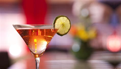 Premium Cocktails Domaine Hudson  Fine Dining Restaurant