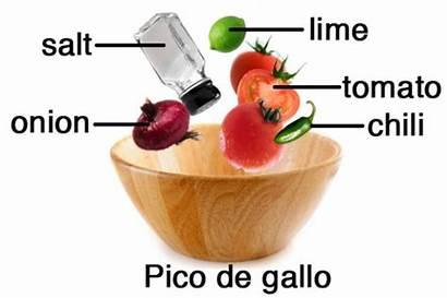 Pico Gallo Ingredients Clipart Salsa Clip Mexican
