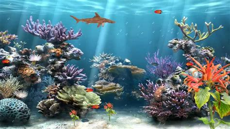 Aquarium Wallpaper Animated Free - animated fish aquarium desktop wallpapers wallpapersafari