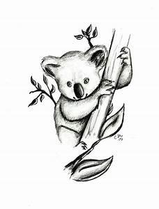 koala drawing pictures - Google Search | Koala tattoo ...