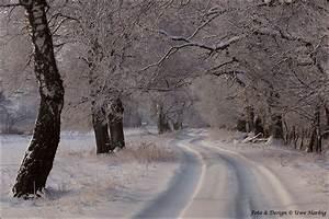 Unkrautvernichtungsmittel Für Wege : verschneite wege forum f r naturfotografen ~ Michelbontemps.com Haus und Dekorationen