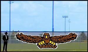 6' x 20' Front Flying Eagle/Hawk