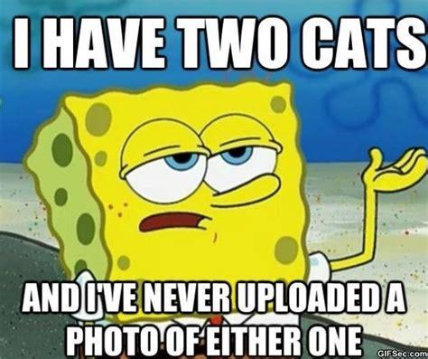 Spongebob Funny Memes - spongebob meme