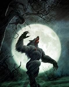 Do Werewolves Really Heal that Fast? | Werewolves