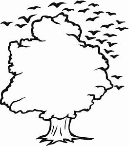 Tree Outline ClipArt Best