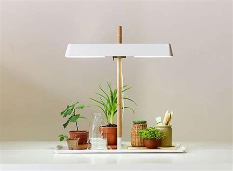 tiny grow light for house plants lights and plants