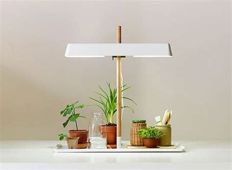 plant lights for indoor plants tiny grow light for house plants lights and plants