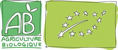 Bio Label Agriculture Biologique Entier Caverne Certifie