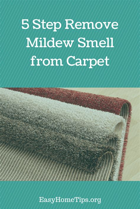 Bathroom Carpet Smells by 5 Step How To Remove Mildew Smell From Carpet Home Tips