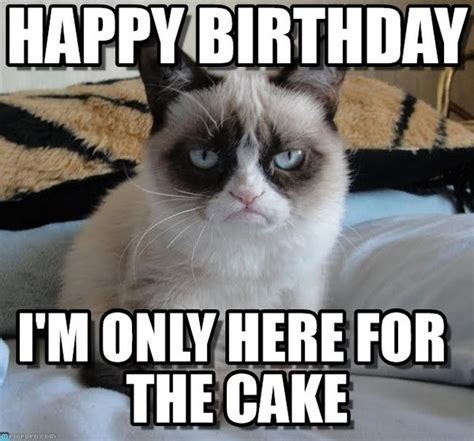 Happy Birthday To Me Meme - 100 ultimate funny happy birthday meme s my happy birthday wishes