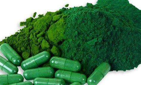 greens in powder form benefits of organic greens powder or capsule