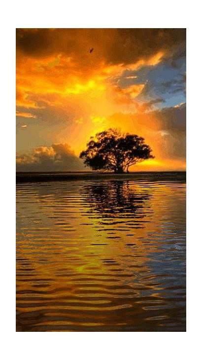 Sunset Photobucket Animated S33 Water Sunrise Nature
