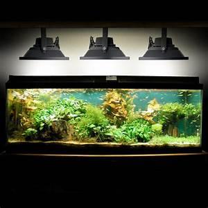 Fld aqua gallery g
