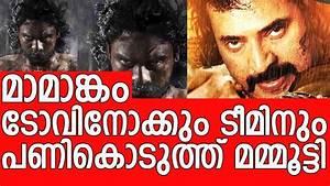 Mammootty's big budget movie Mamangam affect Tovino's that ...