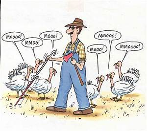 Thanksgiving Fun - Potentially incorrect - but funny? You