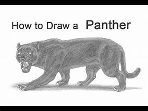 How to Draw a Cheetah | FunnyDog.TV