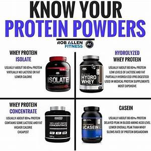 5 Best Muscle Building Supplements For Men  U0026 Women  You Need To Take