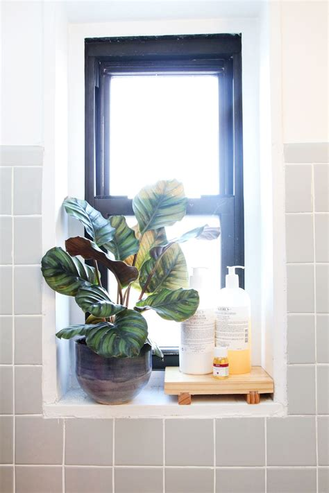 Bathroom Window Ledge by 50 Small Space Living Ideas You Can Use Now Nesting