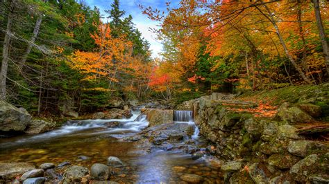 Autumn Wallpapers For Mac by Autumn Woods Mac Wallpaper Free Mac Wallpapers