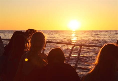 Dinner On A Boat In Cape Town by Cape Town Sunset Cruises Sunset Cruises In Cape