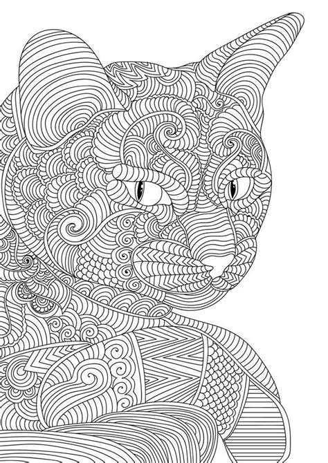 pin  debra daughtry  coloring pages cat coloring page coloring pages coloring books