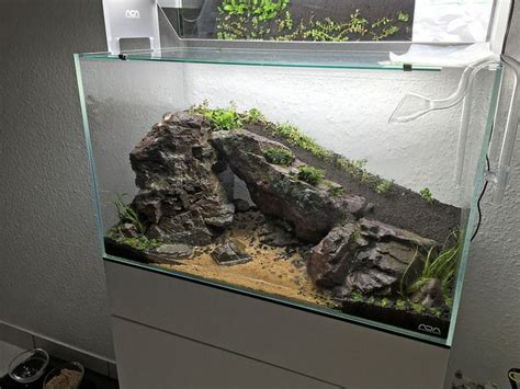 aquascaping supplies 17 best images about aquariums on