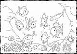 Coloring Rainbow Fish Pages Trout Printable Getcolorings Remarkable Popular sketch template