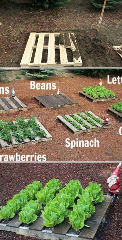 how to plant a small garden yourself 22 ways for growing a successful vegetable garden amazing diy interior home design