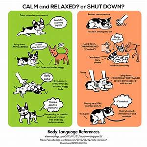 dog-body-language-reference-infographic - Good Dog in a Box