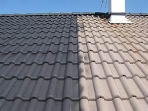 Peinture Pour Toiture : toiture arts sols ~ Melissatoandfro.com Idées de Décoration