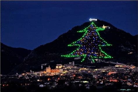 the biggest christmas tree in the world gubbio umbria
