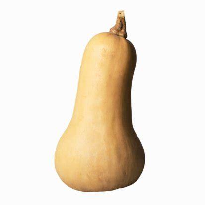 legumes de la famille des potirons l 233 gumes communs isaramap