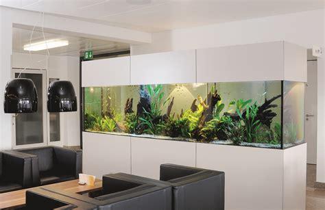 Aquarium Im Wohnzimmer aquarium die unterwasserwelt wohnen homegate ch