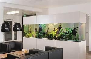 Aquarium Als Raumteiler : aquarium die unterwasserwelt wohnen ~ Michelbontemps.com Haus und Dekorationen