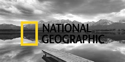 Geographic National Partners Total Pexels Workforce Laying